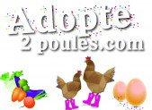 ADOPTE2POULES.COM : MODE D'EMPLOI