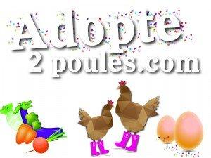 ADOPTE2POULES.COM : MODE D'EMPLOI image1-300x225